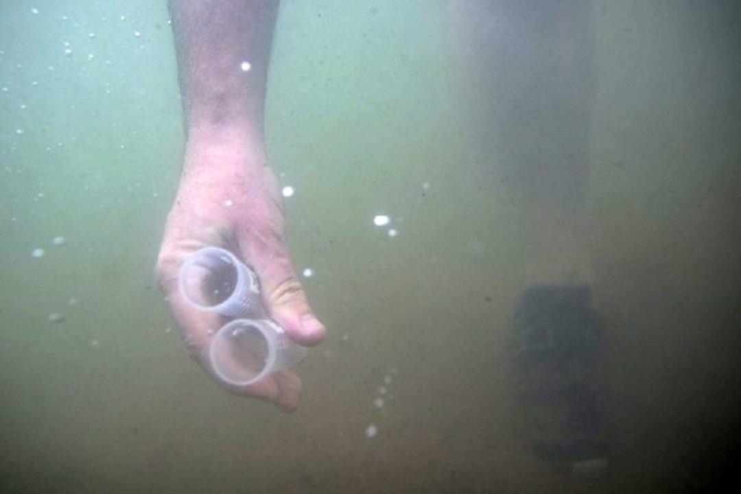 Göl suyunda ilk kez koronavirüs tespit edildi – Van Roj Haber